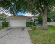 1168 Turtle Lake Court, Ocoee image