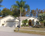 8153 Baytree Drive, New Port Richey image