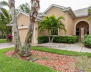 8522 Silk Oak Ln, Naples image