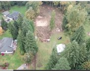 20300 166th Ave NE, Woodinville image