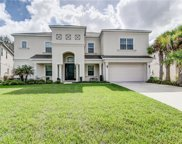 17333 Chelsea Downs Circle, Lithia image