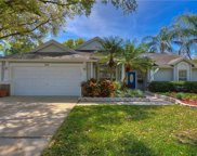 917 Edgehill Drive, Palm Harbor image