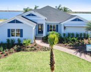 11537 Lake Lucaya Drive, Riverview image