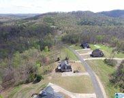 295 Stone Ridge Drive Unit 28 & 29, Springville image