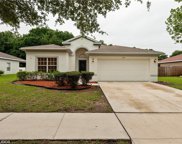 455 Maple Pointe Drive, Seffner image
