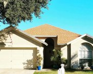 9716 Long Meadow Drive, Tampa image