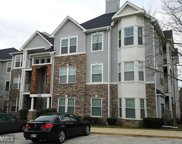 3507 PINEY WOODS PLACE Unit #B002, Laurel image