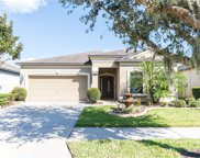 11514 Scarlet Ibis Place, Riverview image
