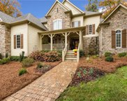 12524  Preservation Pointe Drive, Charlotte image