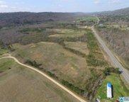 Shoal Creek Rd Unit 4 Acres, Ashville image