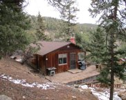 31327 Kings Valley, Conifer image