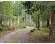 32770 S DHOOGHE  RD, Molalla image