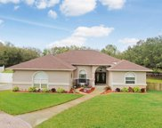 11305 Hoot Owl Court, Riverview image