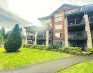 1175 Resort  Dr Unit #224C, Parksville image