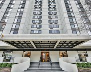 1221 North Dearborn Parkway Unit 1205S, Chicago image
