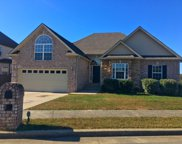 805 Northstar Ct, Old Hickory image