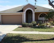 11128 Rodeo Lane, Riverview image