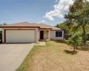 12925 Latchwood Ln, Austin image