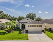 1323 Winding Willow Drive, Trinity image