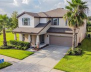9220 Mountain Magnolia Drive, Riverview image