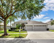1431 Emerald Hill Way, Valrico image