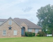 1229 Hunters Point Ln, Spring Hill image