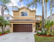 435 Fishtail Ter, Weston image