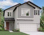 4182 Cadence Loop, Land O' Lakes image