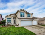 8820  Wild Duck Court, Elk Grove image