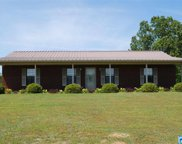 648 Boothe Ln, Brierfield image