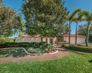 2899 Green Meadow Court, Clearwater image