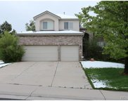 10770 Willow Reed Court, Parker image
