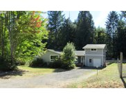 36946 PARSONS CREEK  RD, Springfield image