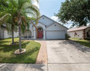 2035 Black Hawk Street, Clermont image