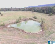 Highway 411 Unit 110+/- Acres, Ashville image