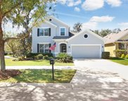 15843 Starling Water Drive, Lithia image