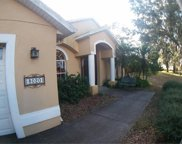 8020 Pine Island Road, Clermont image