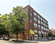 1733 West Irving Park Road Unit 319, Chicago image