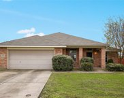 431 Chinaberry Trail, Forney image