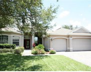 4024 Long Branch Lane, Apopka image
