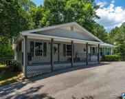 4997 Branchville Road, Trussville image