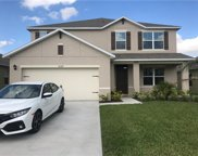 16169 Yelloweyed Drive, Clermont image