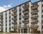 9074 West Terrace Drive Unit 5M, Niles image