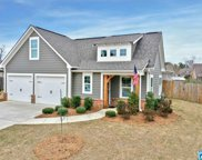 221 Shelby Farms Bend, Alabaster image