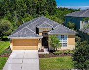 20203 Merry Oak Avenue, Tampa image