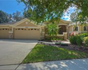 15209 Merlinglen Place, Lithia image