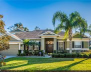 3129 Twisted Oak Loop, Kissimmee image