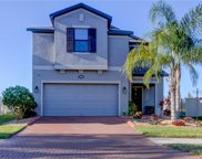 19469 Roseate Drive, Lutz image
