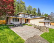 20603 SE 136th St, Issaquah image