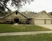 1933 Downing Place, Palm Harbor image